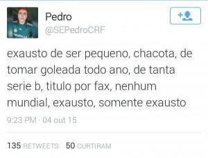 Palmeiras2-300x229 Palmeiras Século XXI: uma humilhação por ano desde 2000