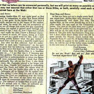 figura-5-5-300x300 A relação entre leitores e autores nos quadrinhos do Homem-Aranha