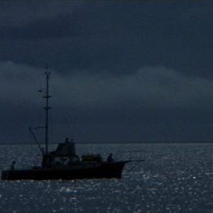 jaws2-300x300 Análise: Estrelas cadentes nos filmes de Steven Spielberg