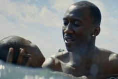 Crítica: Moonlight – Sob a Luz do Luar