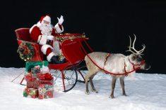 Estudo: Papai Noel existe ou não?