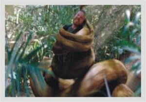 SnakeKing2-300x210 Piores filmes do mundo: Snake Man (The Snake King)